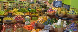 Grocery Shopping Tips for Penny Pinchers
