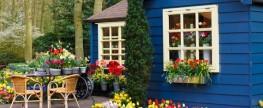 Start-Up Business Idea – Flower Shop or Florist Service