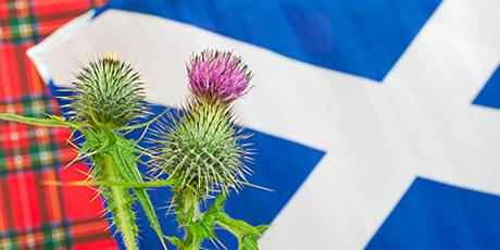 Financial Effects of Scottish Independence